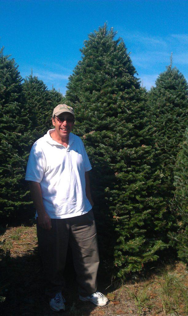 Christmas Tree Shop Natick